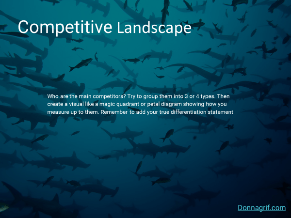 Competitive Landscape Slide