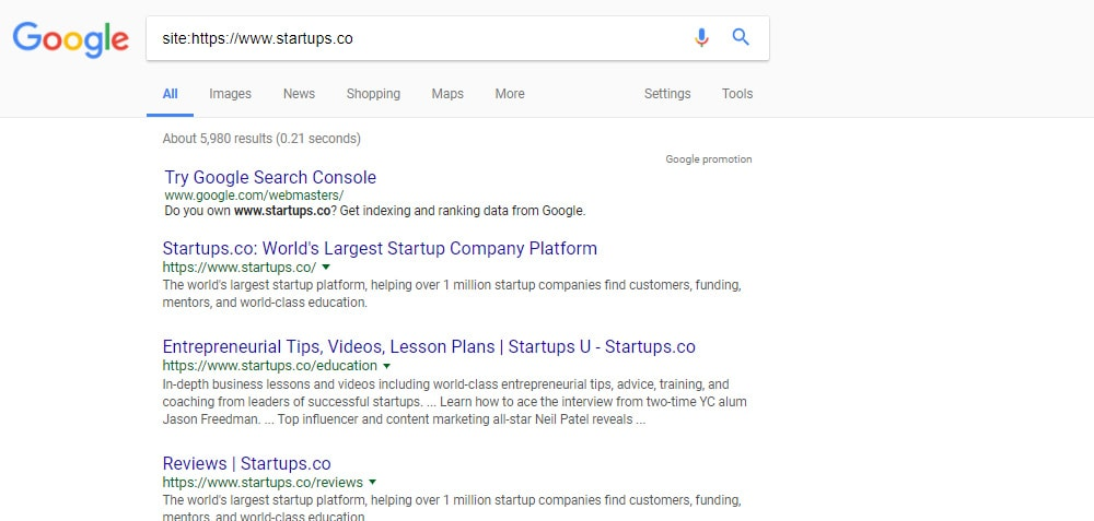 Google SERP Site: Search Indexed Pages