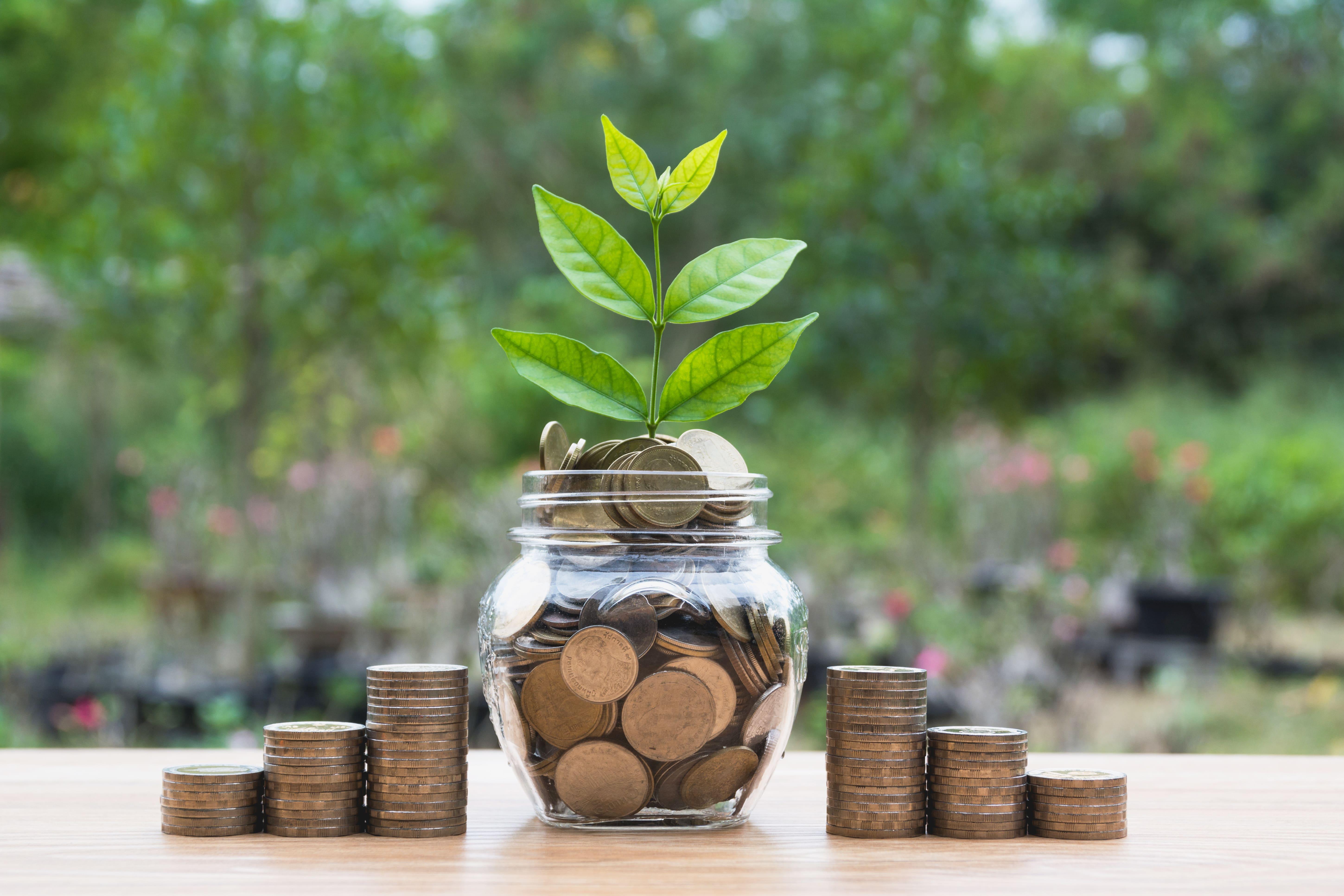 minority business grants